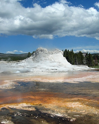 Castle Gyser- Yellowstone