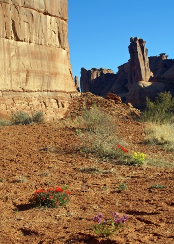 Spring in Arches