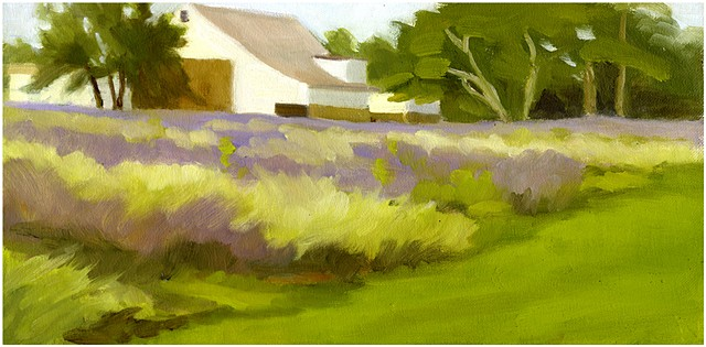 Lavender Fields Forever SOLD