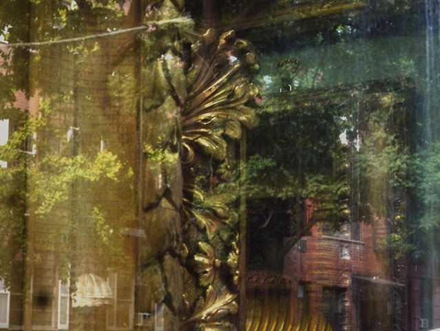 Acanthus Reflections 7
