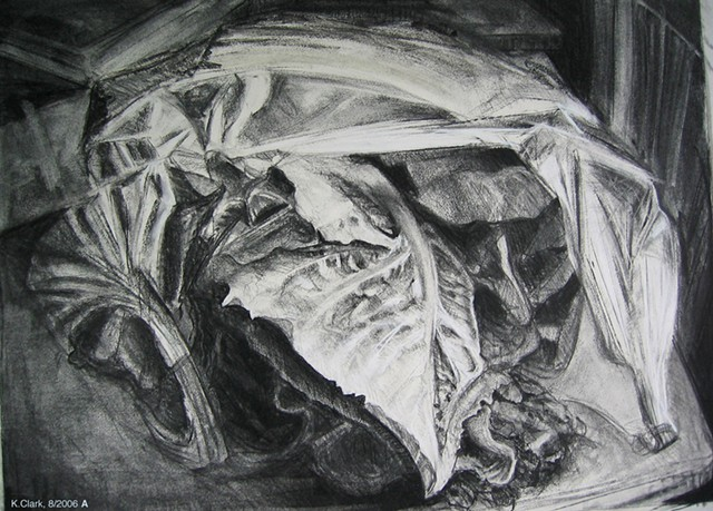 A charcoal drawing of greens bought at the Farmer's Market.