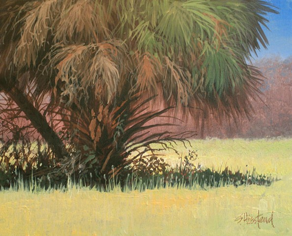 Palm trees Florida Acrylic Scott Hiestand