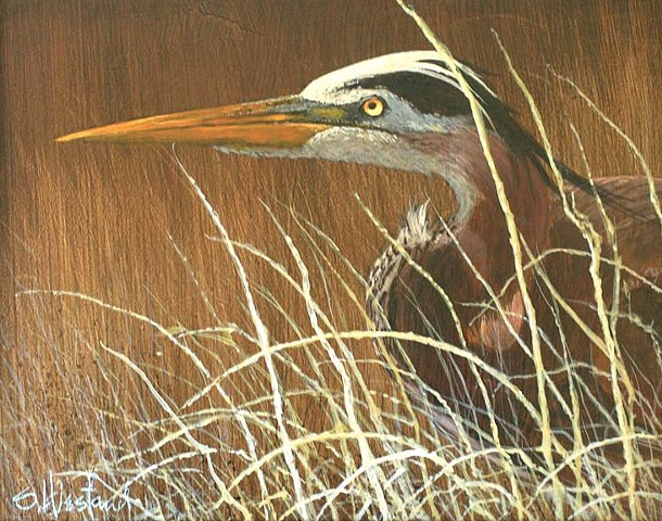 Florida Blue Heron Hunting Acrylic painting Scott Hiestand