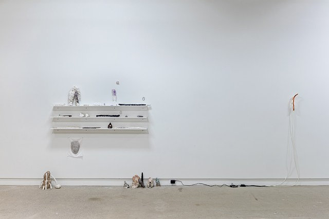 installation view: 'turn that brown upside down'