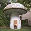 'Mushroom Studio'