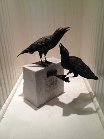 Bronze Grackles by Thomas Prochnow