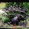 Peacock Bench