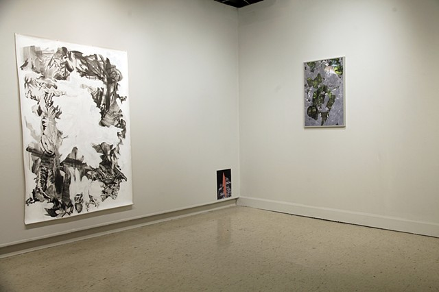 "Installation View: ""Spill at the Northeast Border"" and ""Forest Interference"""