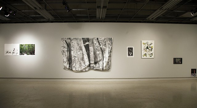 Installation View. Groundswell, Illinois State University