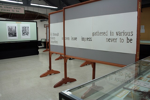 "Installation View, ""We've Been to this Site."" (View from left of the back of gallery)"