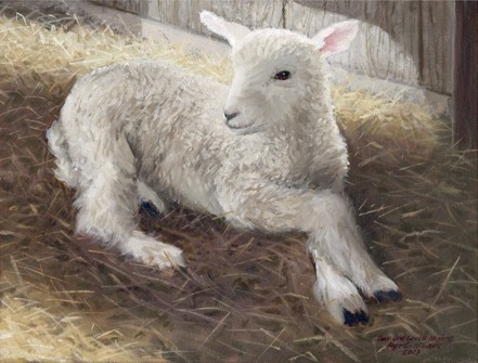 """""""Lamb, Day One"""""""