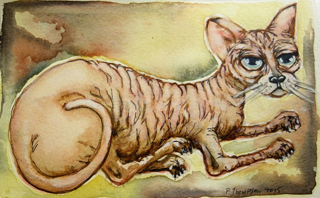 dana's hairless cat - 2015