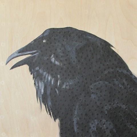 raven, crow, dead bird, dead raven, blind bird, blind raven