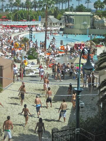 photograph,beach,sun,volleyball