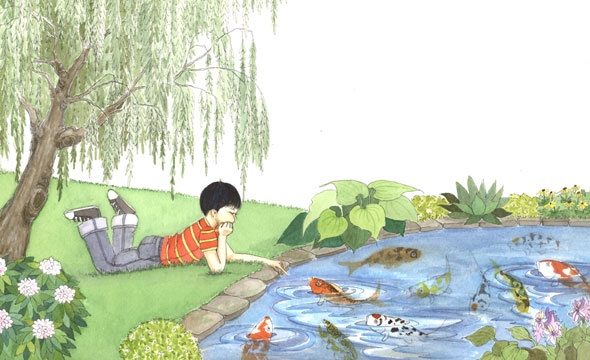 Boy's Koi Pond