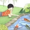 Boy&#39;s Koi Pond