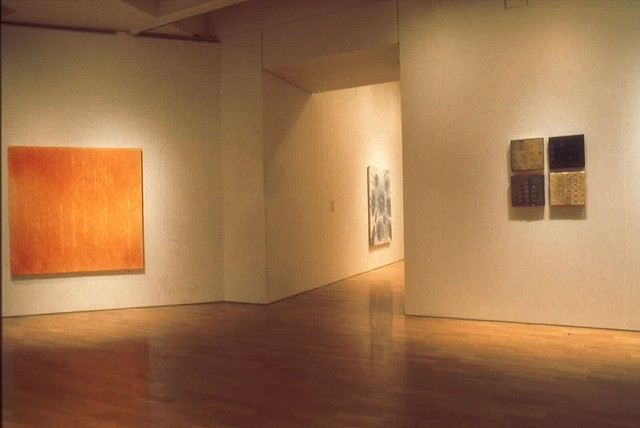 Installation View of Perspective '96  Art Gallery of Ontario oil on canvas on board 22 paintings 5' x 5' - 1' x 1'