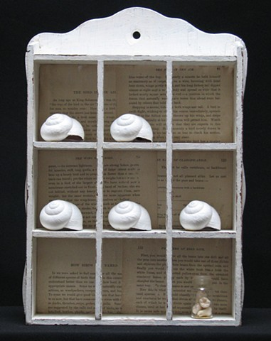 found-object sculpture with white snail shells on shelf, with small bottle of teeth,
