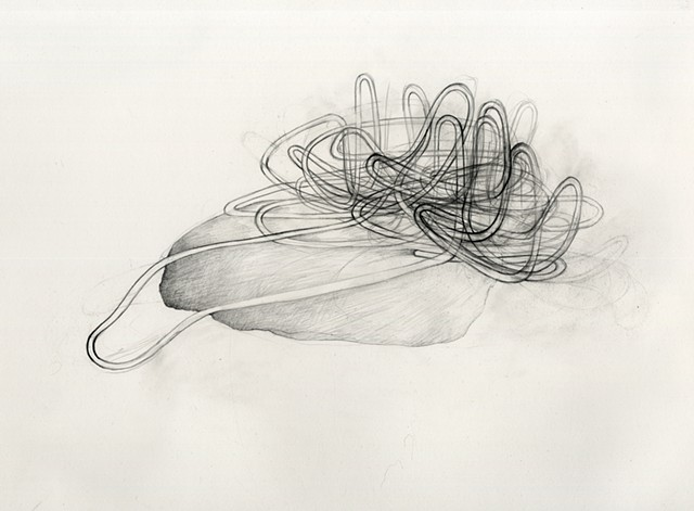 Abstract drawing of organic pipelines, intestines by Kathleen Thum