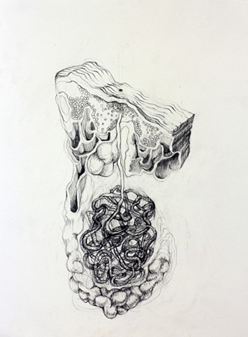 Graphite Drawing of Anatomical Drawing of Pipelines by Kathleen Thum