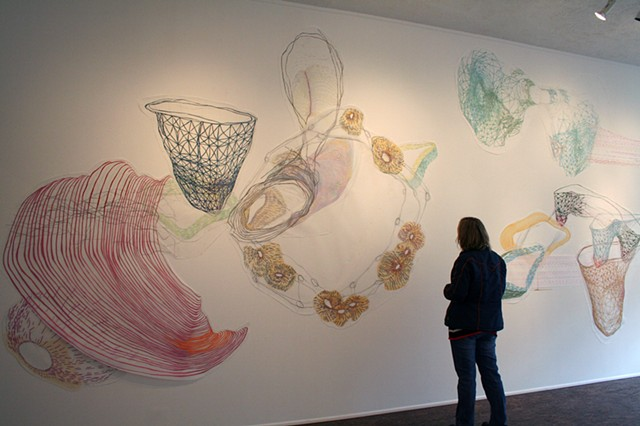 Installation drawing of abstract biomorphic body systems by Kathleen Thum