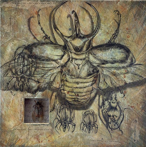 Dung Beetles Journey