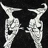 Ivory Billed Woodpeckers - Extinct