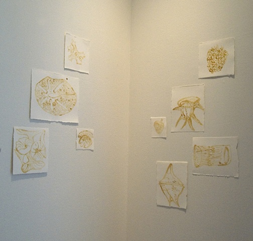 Ocean Life - Installation View 1
