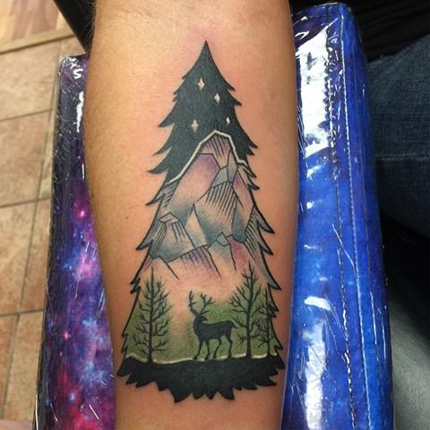 Mountain tree