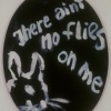 No Flies