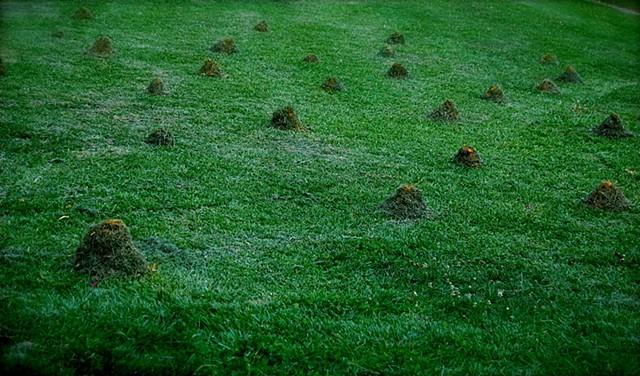 Grass mounts_detail