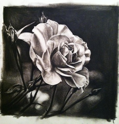 Charcoal drawing, Floral drawing, Lovecraft Tattoo, Ct Tattoo, Best Tattoo, Rose