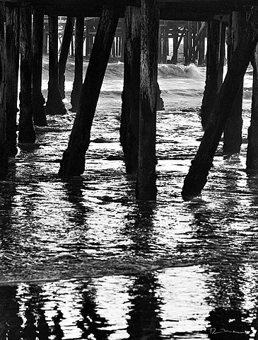 Under the P.O.P. pier and piles