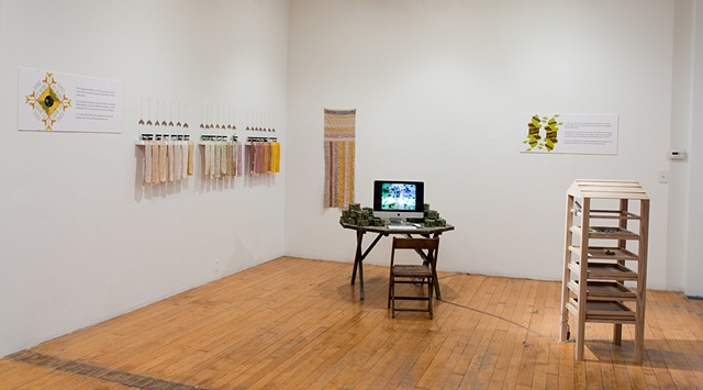 Gallery Installation/ Spectrum and Flag