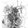 Forsaken Articles: Sea Grass III
