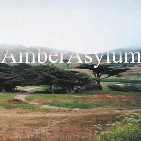 Amber Asylum - Supernatural Parlour Collection, RR 6472-2 - Release Entertainment