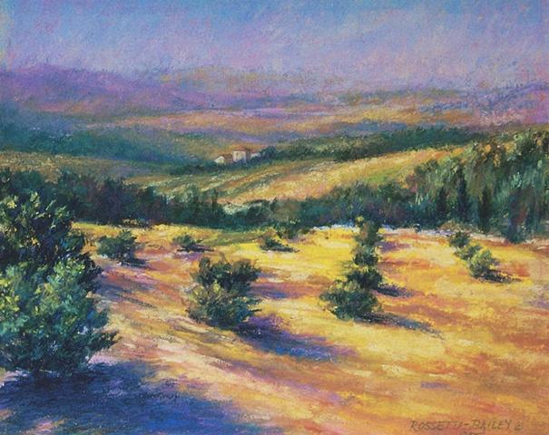 """Tuscan Hillside"""