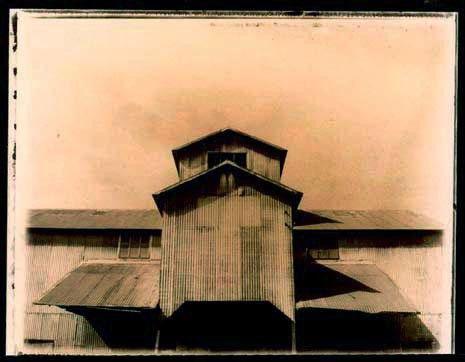 Tintype, Southern photography
