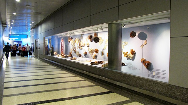 LAX installation with Leanne Lee, Tom Bradley International Terminal