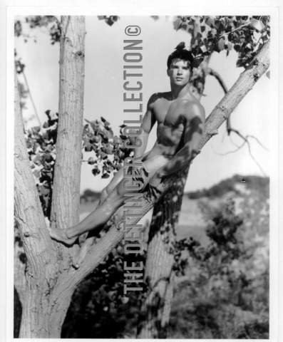 GLENN BISHOP FIRST  SESSION  NUDE IN TREE