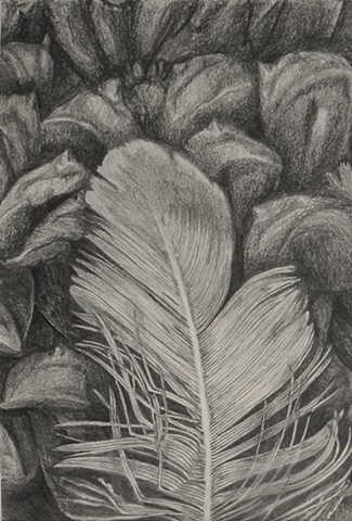 Introduction to Drawing: Simulated Texture