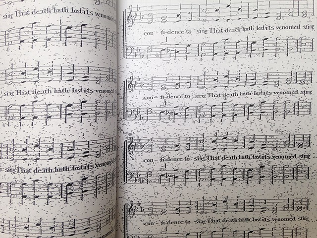 Detail of Confidence to Sing
