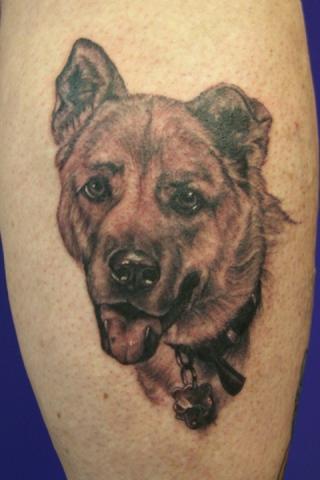 Ron Meyers - Dog Portrait on Linda