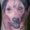 Ron Meyers - Dog Portrait on Tattoo Artist Tabari