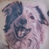 Ron Meyers - Dog Portrait2