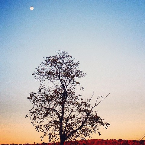 Moon over Palisades