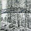 St John's River (Winter)  2000