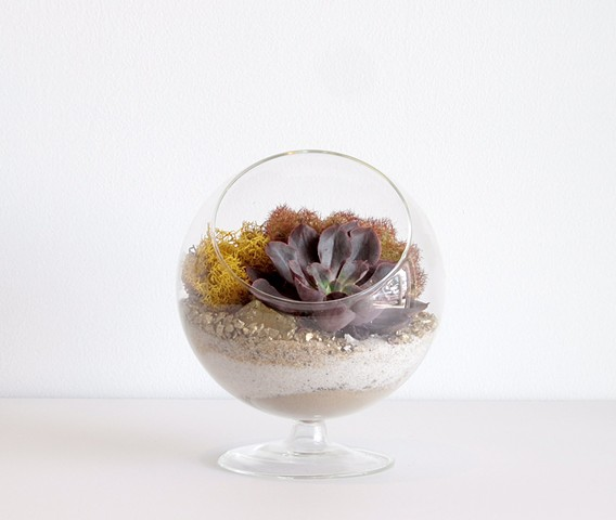By The Archive Gallery Small Satellite Terrarium
