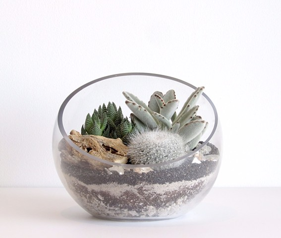 By The Archive Gallery Half Moon Terrarium