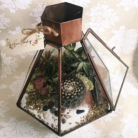 """Light House"" Terrarium"